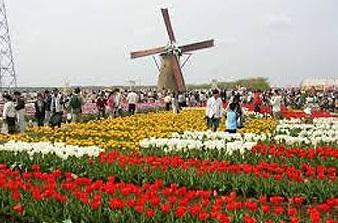 オランダ写真.jpg