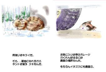 一枚絵本ねこ描_B.jpg