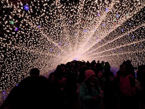 光のトンネル02.jpg