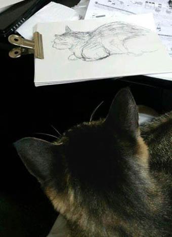 猫とスケッチ.jpg