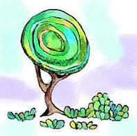 fresh-tree.jpg
