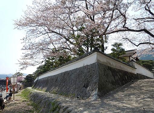 五十鈴川桜_27.jpg