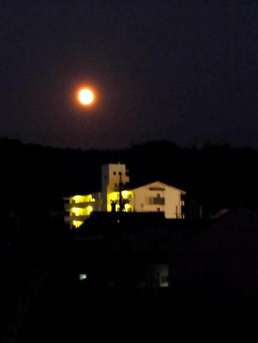 月が照る.jpg