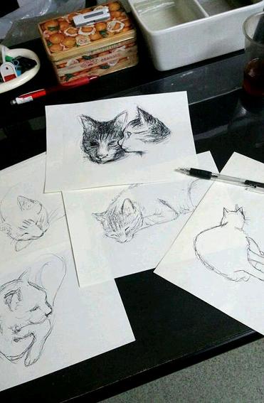 机上猫スケッチ.jpg